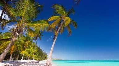 ¡Dalo todo en Punta Cana!