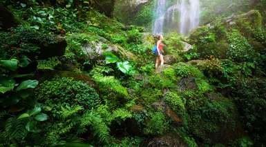 Honduras: Aventura en la Naturaleza e Isla Caribeña de Roatán