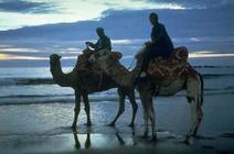 Hôtels : Maroc