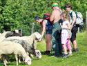 Bauernhof Ablass - Familie Zettel