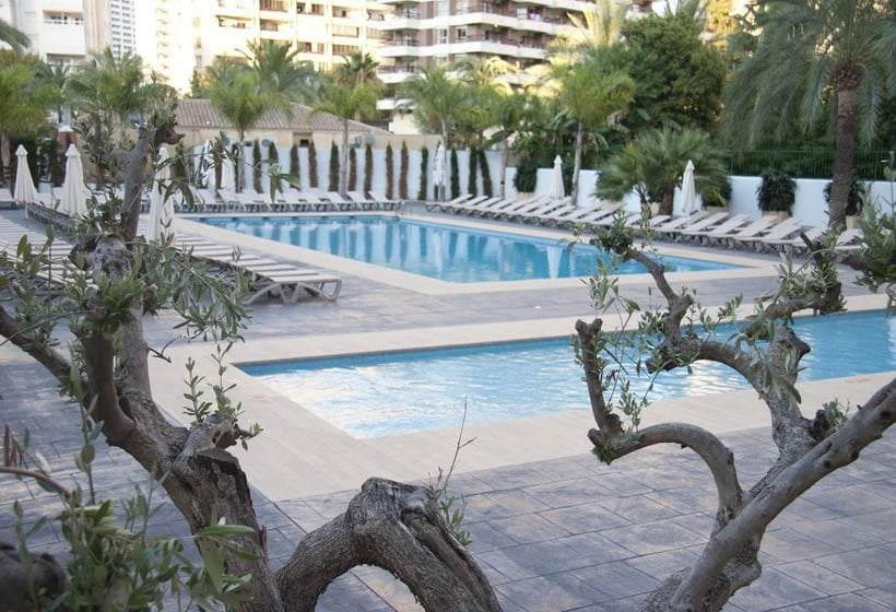 Swimming pool Hotel Flash - Adults Only Benidorm