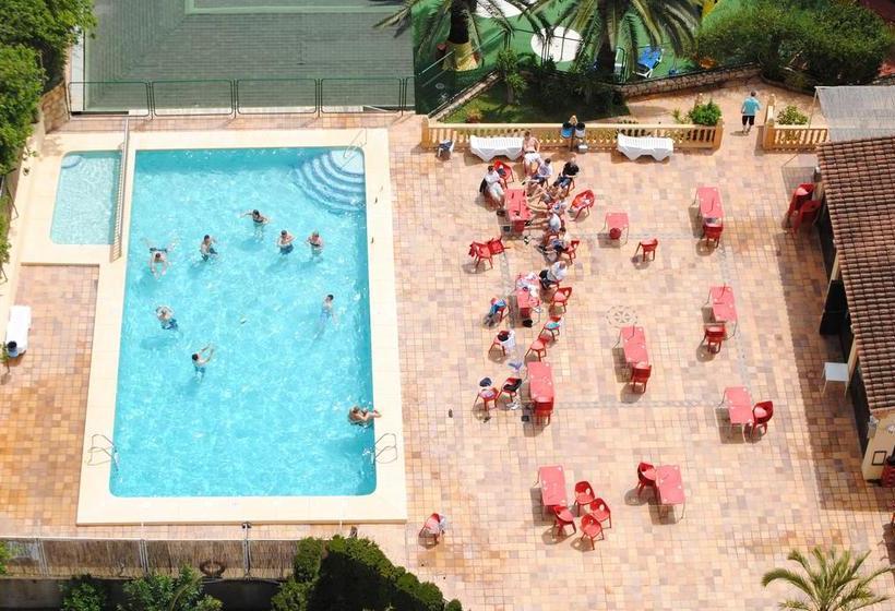 Apartamentos Palm Court Benidorm