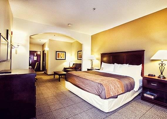 Hotel Comfort Inn & Suites Market Center Dallas