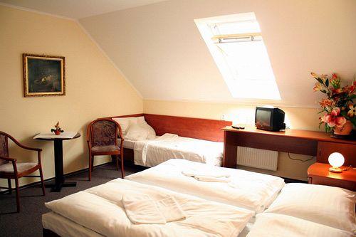 Hotel U Hvezdy Prague