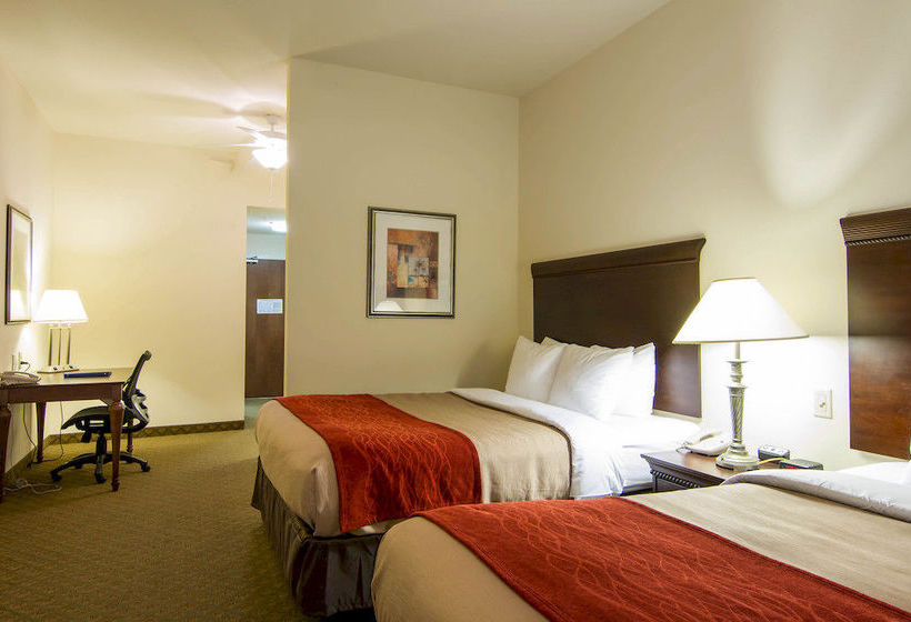 Hotel Comfort Inn & Suites Airport Fort Myers