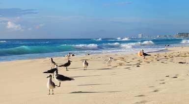 Estancia en Riviera Maya (Caribe Premium)