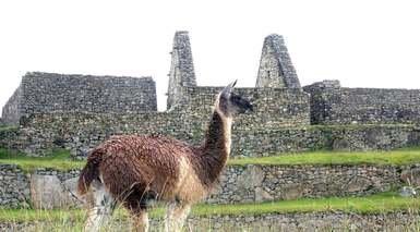 Perú Inca y Colonial al Completo