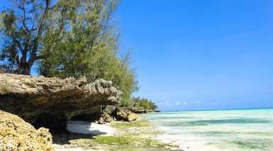 Fruit & Spice Wellness Resort Zanzibar - Kizimkazi