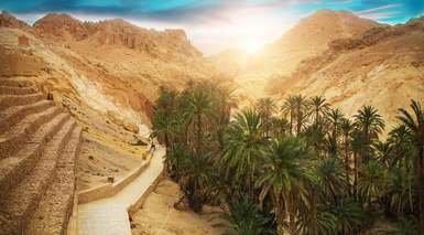 Tour por Túnez con Excursiones