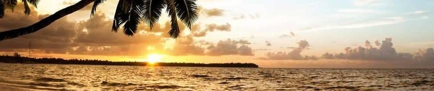 Punta Cana en Todo Incluido