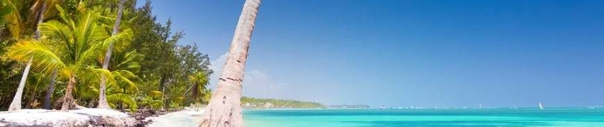Punta Cana en Todo Incluido desde Madrid - BLACK FRIDAY