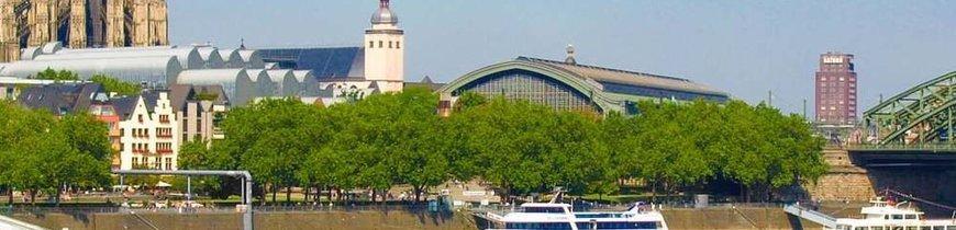 Crucero Fluvial por el Rhin - Puente de Diciembre