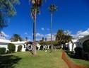 Bungalows Canary Garden Club