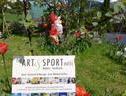 The Art & Sport