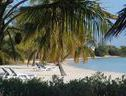 Buff House Beach Resort & Marina