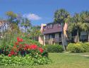 Hilton Head - Value Villas