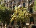 Flateli Mallorcapasseig De Gracia