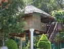 Green Ark Resorts