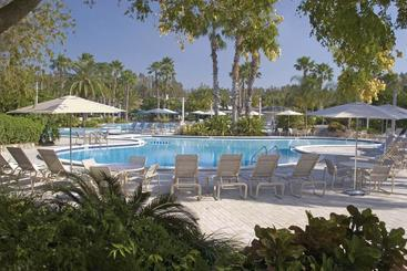 Saddlebrook Golf Resort & Spa Tampa Northwesley Chapel - Tampa