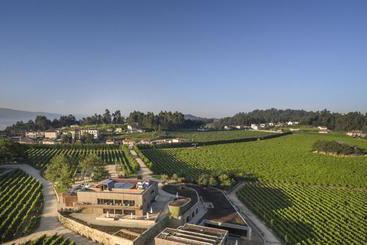 Monverde  Wine Experience - Amarante