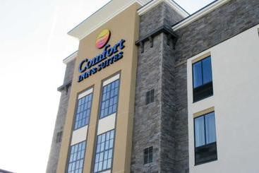 Comfort Inn & Suites Niagara Falls Blvd Usa - Niagara Falls